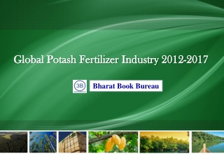 Global Potash Fertilizer Industry 2012-2017: Trend, Profit,