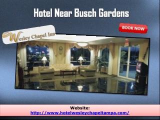 hotel near  busch gardens