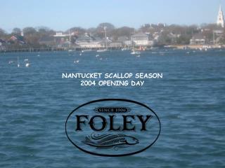 NANTUCKET SCALLOP SEASON 2004 OPENING DAY