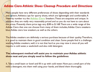 Adidas Ciero Athletic Shoes Cleanup Procedure and Directions
