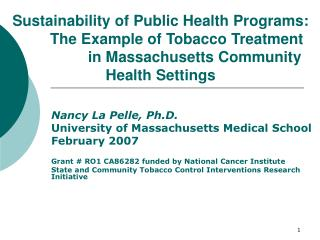 Sustainability of Public Health Programs:  The Example of Tobacco Treatment    in Massachusetts Community Health Setting