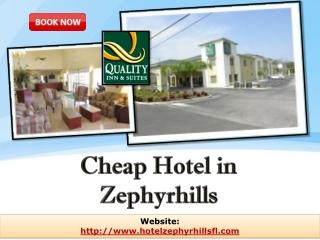 cheap hotel in zephyrhills