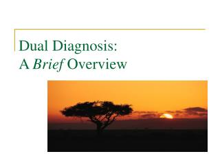Dual Diagnosis: A Brief Overview