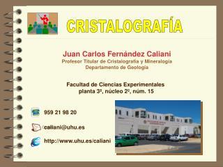 Juan Carlos Fern ndez Caliani Profesor Titular de Cristalograf a y Mineralog a Departamento de Geolog a