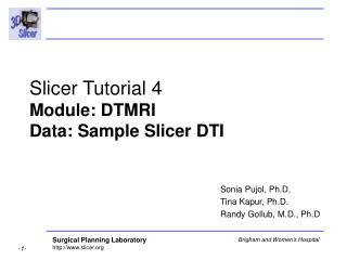 Slicer Tutorial 4 Module: DTMRI Data: Sample Slicer DTI