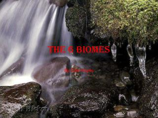 The 6 Biomes