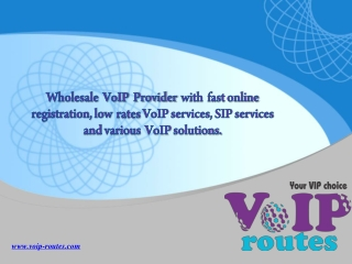 Wholesale VoIP Provider | Low Rate VoIP | VoIP Routes