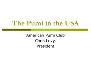 The Pumi in the USA