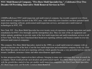 NYC Mold Removal Company