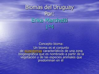 Biomas del Uruguay Por:  Erika Marchetti 1 4
