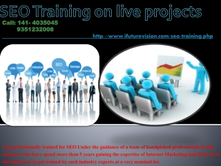 SEO Training on live Projects