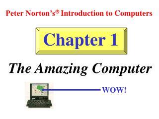 The Amazing Computer