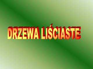 DRZEWA LISCIASTE