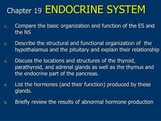 Chapter 19 ENDOCRINE SYSTEM