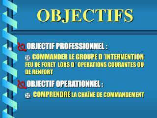 OBJECTIF PROFESSIONNEL :   COMMANDER LE GROUPE D  INTERVENTION    FEU DE FORET  LORS D   OPERATIONS COURANTES OU DE RENF