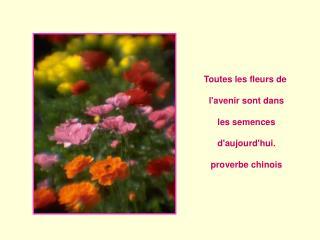 Toutes les fleurs de   lavenir sont dans   les semences    daujourdhui.    proverbe chinois