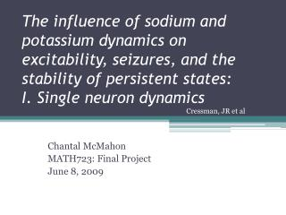 The influence of sodium and potassium dynamics on excitability, seizures, and the stability of persistent states:  I. Si