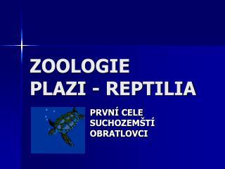 ZOOLOGIE PLAZI - REPTILIA