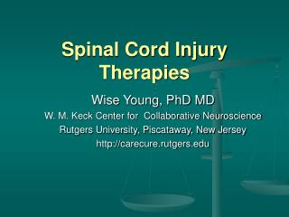 Spinal Cord Injury Therapies