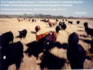 The Tragedy of the Commons: A Heuristic Model for Understanding the Problem and Evaluating Educational and Regulatory So