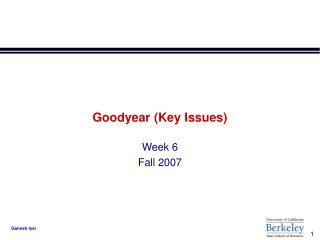 Goodyear Key Issues