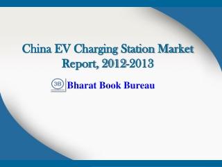 China EV Charging Station Market Report, 2012-2013
