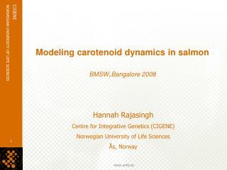 Modeling carotenoid dynamics in salmon  BMSW,Bangalore 2008