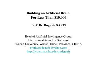 Building an Artificial Brain  For Less Than 10,000  Prof. Dr. Hugo de GARIS   Head of Artificial Intelligence Group, Int