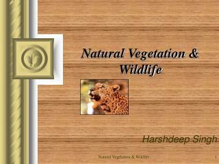 Natural Vegetation  Wildlife