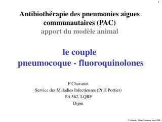 Antibioth rapie des pneumonies aigues communautaires PAC apport du mod le animal  le couple  pneumocoque - fluoroquinolo