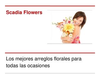 Los mejores arreglos florales en Quito