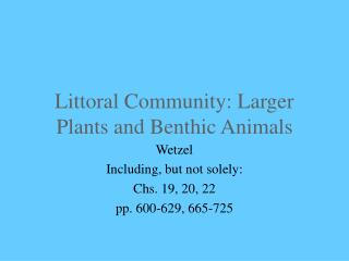Littoral Community: Larger Plants and Benthic Animals