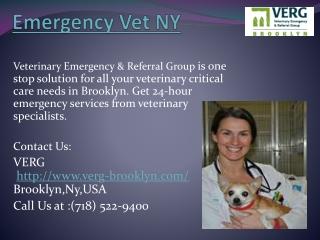Emergency Vet NY