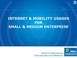 INTERNET  MOBILITY USAGES FOR  SMALL  MEDIUM ENTERPRISE