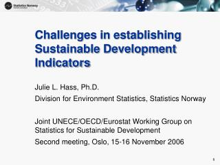 Challenges in establishing Sustainable Development Indicators