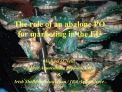 The role of an abalone PO for marketing in the EU