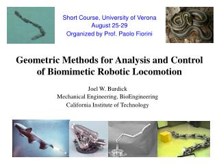Geometric Methods for Analysis and Control of Biomimetic Robotic Locomotion