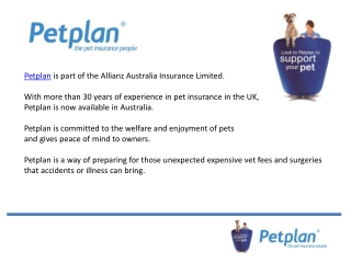 Why pet insurance is a must for your pet?