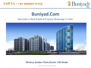 9999011115-Nimbus IITL Golden Palm