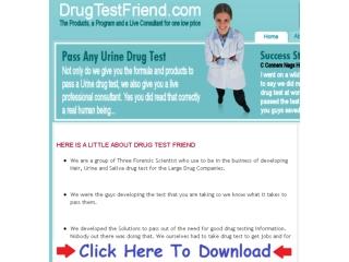 Does Drug Test Friend Work   Drugtestfriend Formula