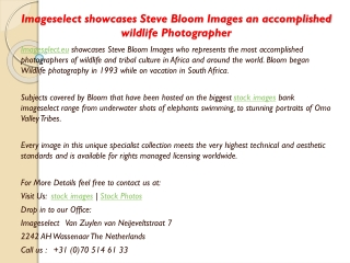 Imageselect showcases Steve Bloom Images an accomplished wil