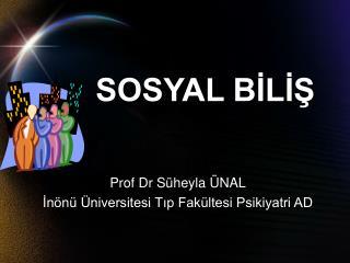 SOSYAL BILIS