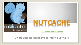 Nutcache - Best And Free Reporting Application