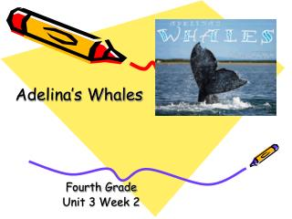 Fourth Grade Unit 3 Week 2
