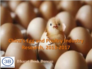 China's Egg and Poultry Industry Research, 2013-2017