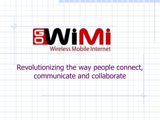 GoWiMi - Wireless Mobile Internet