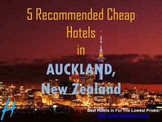 5 Recommended Cheap Hotels in Auckland