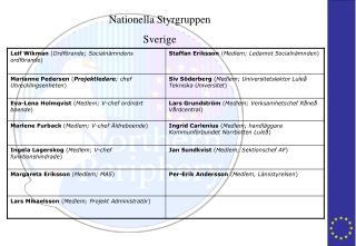 Nationella Styrgruppen Sverige