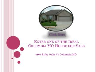 enter one of the ideal columbia mo house