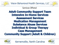 Vision Behavioral Health Services, LLC